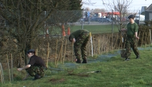 Cadets from 1237 Squadron ATC plant the new hedge. Photograph: Howard Heeley