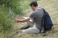 Wild flower identification course run by BTCV