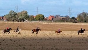 Cantering across stubble fields. Photograph: Barry Coward.