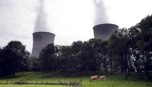 Cows grazing close to cooling towers. Photograph: Penny Fillingham