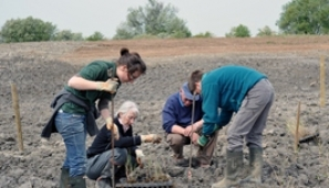 Volunteers at Besthorpe Nature Reserve near Collingham. Photograph: Andy Wickham